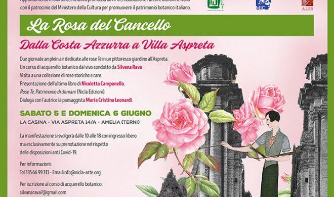 La Rosa del Cancello. Dalla Costa Azzurra a Villa Aspreta